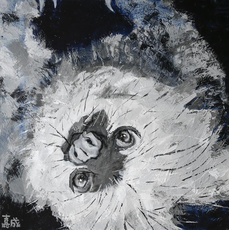 夜の森のフタユビナマケモノ